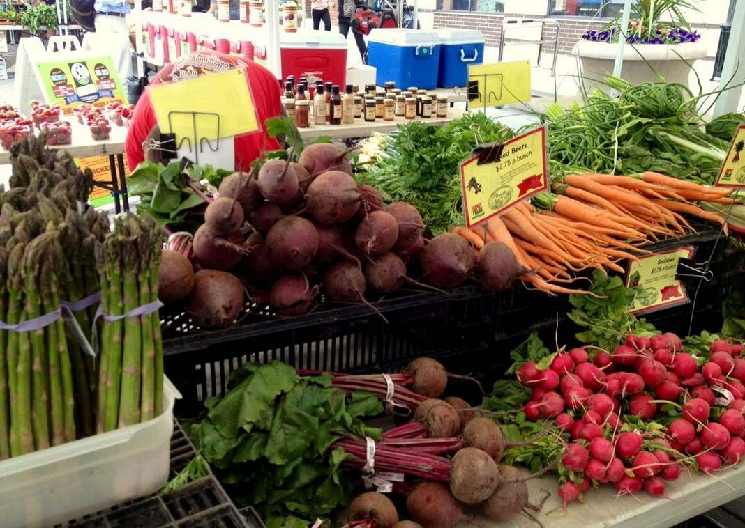 Businesses in Jersey City: Farmers� Markets